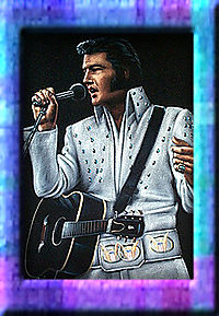 Velvet_Elvis