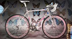 Hirst_bike