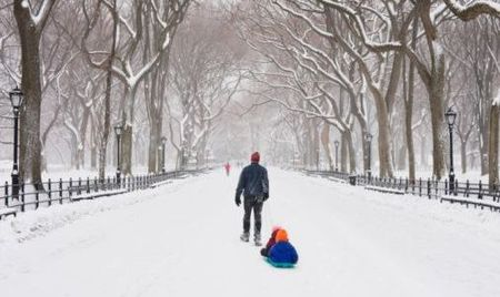 Snow in artPark