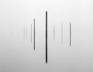 Brian_kosoff_pier_pilings_with_bird
