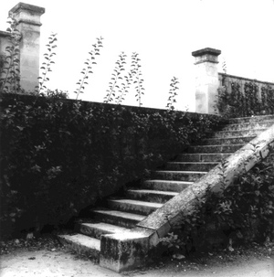 Becky_cohen_stairs_at_versailles